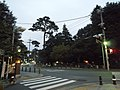 TamagawaJosui nearInokashiraPark.JPG