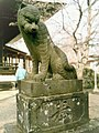 Tamon'in Tokorozawa guardian komatora (狛虎) Agyo-right.jpg
