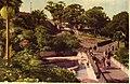Taronga Park Zoo (26481774484).jpg