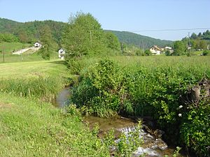 Temenica - Temenica in its upper valley, at Sobrače