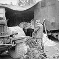 The British Army in North-west Europe 1944-45 BU1857.jpg