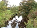 The River Derwent near Hilla Green - geograph.org.uk - 1506961.jpg