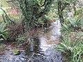 The River Kennall at Tretheague - geograph.org.uk - 1025810.jpg