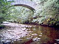 The stream beneath Bridge of Tanar - geograph.org.uk - 259020.jpg
