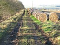 The track from West Side to Hallington New House - geograph.org.uk - 624265.jpg
