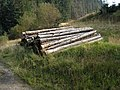 Timber stack on the West Aquaduct (sic) road - geograph.org.uk - 334156.jpg