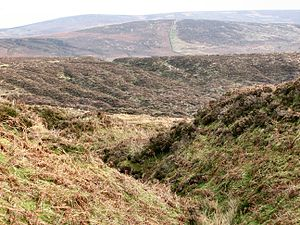 Mining in Cornwall and Devon - Openworks near the Warren House Inn, Dartmoor – looking down one gully towards a group of them in the middle distance, and more on the left side of the ridge beyond