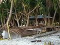 Tokelau Atafu vaka canoe. 20070715.jpg