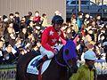 Tokyo Daishoten Day at Oi racecourse (31982628175).jpg