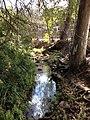 Toowong Creek in Oakman Park, Toowong, Brisbane 02.JPG