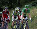 Tour de France 2015, sagan-bus (19441625633).jpg