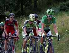 A group of cyclists riding up an incline being lead by one wearing a green jersey.