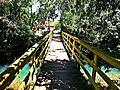 Três Cachoeiras - RS (3).jpg