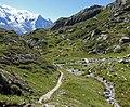 Trail in Chamonix 5.jpg