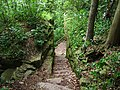 Trail to Green Bay in Bay Shore County Park.jpg