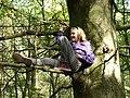 Tree Girl 2.jpg