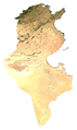 Tunisa sat.png