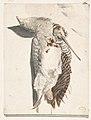 Two Dead Birds (A Quail and a Long-Beaked Bird). MET DP809440.jpg