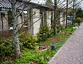 U.S. Botanic Garden in April (23908688191).jpg
