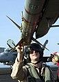 """US Navy 021004-N-8497H-003 Pilot checks an AIM-7 """"Sea Sparrow"""" missile on his aircraft during preflight checks.jpg"""