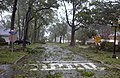 US Navy 030918-N-3235P-019 Rain and heavy winds from Hurricane Isabel pound Naval Station Norfolk, Va.jpg