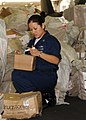 US Navy 090127-N-2562S-005 Interior Communications Electrician 3rd Class Erica Tapia assists in sorting mail during a mail working party aboard the aircraft carrier USS Theodore Roosevelt (CVN 71).jpg