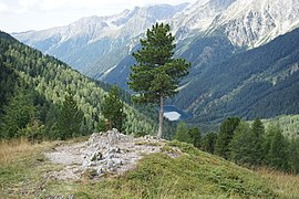 Umgebung des Staller Sattels mit Bergen 23082018 036.jpg