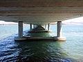 Under mcgees bridge 2012.jpg