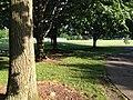 Upper Arlington, Ohio (27731511705).jpg