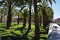 VIEW , ®'s - DiDi - RM - Ð 6K - ┼ , MADRID PARQUE de PEÑUELAS JARDÍN - panoramio (154).jpg