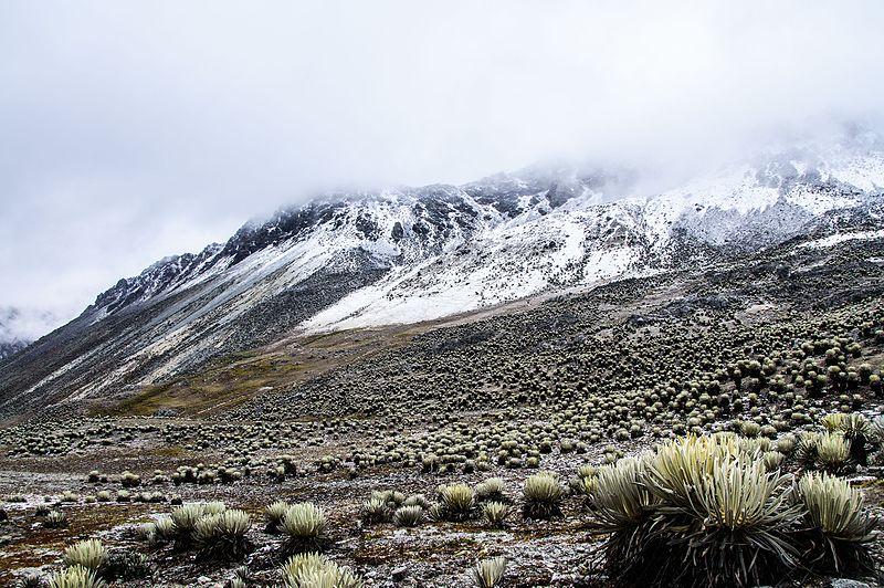 Valle de Mifaf%C3%AD 3.jpg