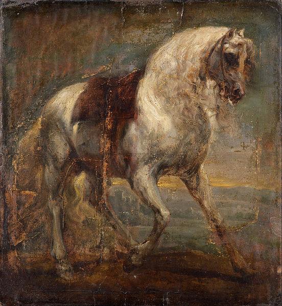 File Van Dyck Sir Anthony A Grey Horse Google Art