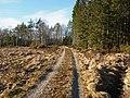 Veien fra Stomnås til Furuly - panoramio.jpg