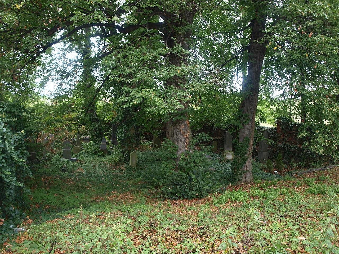 Velká nad Veličkou, židovský hřbitov (1).JPG