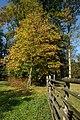 Veltrusy, zámecký park na podzim, ohrada.jpg