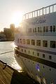 Venus Cruise (11144592205).jpg