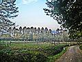 Vespignano-Landscape 7.jpg