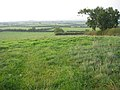 View across the Vale of Belvoir, Leicestershire - geograph.org.uk - 64619.jpg