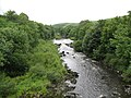 View of Nith river taken from Glenairlie bridge - geograph.org.uk - 992013.jpg