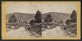 View on the Turnpike between Turners and Greenwood, by E. & H.T. Anthony (Firm).png