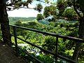 Vista Restaurante Colina Verde - Nova Petrópolis - panoramio.jpg