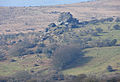 Vixen Tor from East.jpg