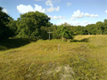 Vlakte van Waalsdorp (Waalsdorpervlakte) 2016-08-10 img. 367.png