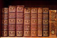 Volumes of the Encyclopædia Britannica (9th edition, 1875–1889).jpg