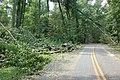WE Entrance road (6096645313).jpg