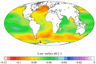 Ocean acidification Ongoing decrease in the pH of the Earths oceans, caused by the uptake of carbon dioxide