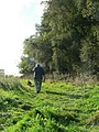 Walking the dog, Loynton Moss Reserve - geograph.org.uk - 250789.jpg