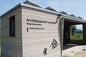 Wauwil arkeologia lernopado 051.jpg