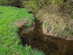 Weilersbach Weilersbachtal -20200419-RM-171539.jpg