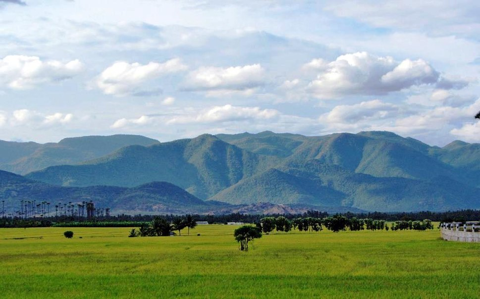 Western Ghats Gobi
